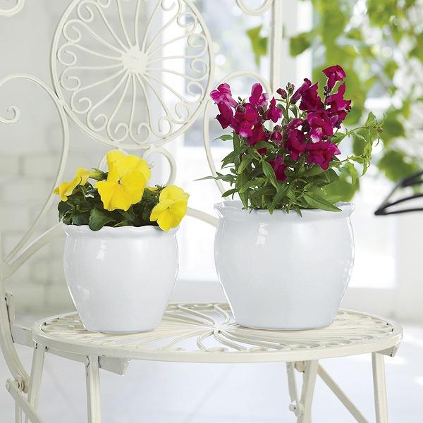 植木鉢2点セット/ホワイト